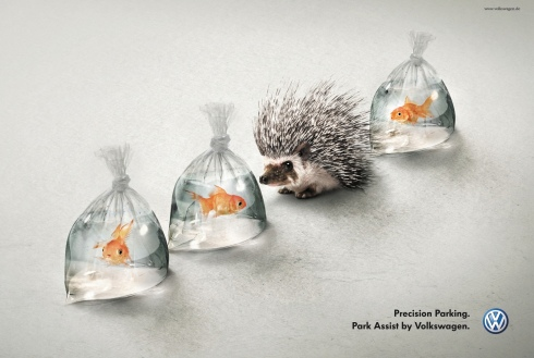Volkswagen_Park_Assist_Hedgehog_And_Fish_ibelieveinadv
