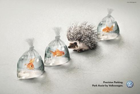 Volkswagen_Park_Assist_Hedgehog_And_Fish_ibelieveinadv