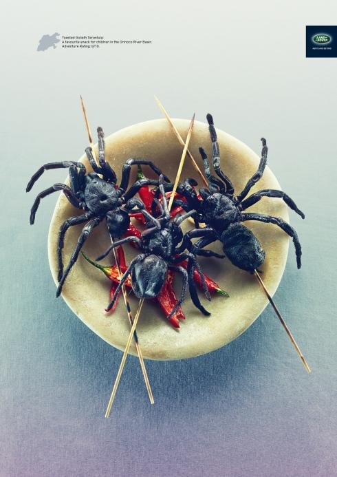 land-rover-tarantula